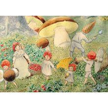 Tomtebobarnen svampar