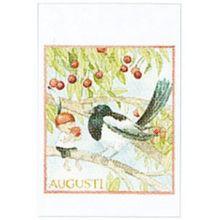 Augusti minikort