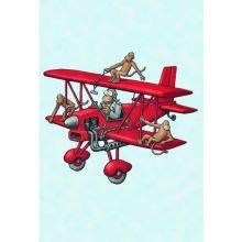 Flygplan minikort