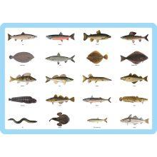 Fiskar Underlägg